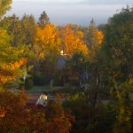 Fall Foliage- (from our porch)