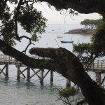 Bois de la Chaize + Estacade de la plage des Dames
