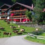 Foto di Hotel Alpengasthof Schwand