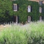 Photo de Domaine Saint Hilaire