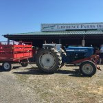 Cherry Season at Lawrence Farms Orchards
