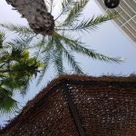 Photo de Servigroup Torre Dorada
