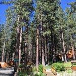 Heavenly Valley Lodge Bed & Breakfast Foto