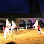 Foto de Caballerizas Reales de Córdoba