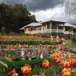 Mossbrook B&B and gardens.