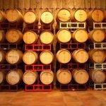 Cape May Winery Photo