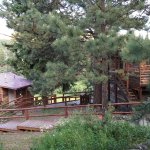 We loved Riverbend. The location is great. The staff is friendly & welcoming. The cabins have ev
