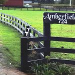 Entrance to Amberfields