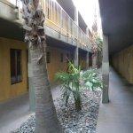 Foto de Alexis Park Resort