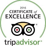 We won this year the certificate of excellence!!