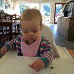 The Lakes Boatshed Cafe