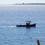 Lobsterman in the morning pulling up his traps