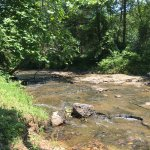 Nice scenic creek we played in for hours