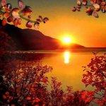 Oyster sunsets@Ölüdeniz