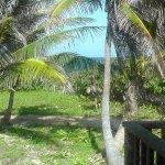 Photo de Clarion Suites Roatan at Pineapple Villas
