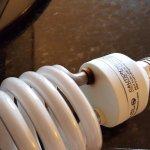the flaming light bulb