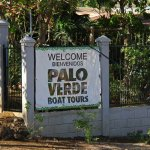 Our first tour with Tours Your Way. Palo Verde Boat Tour
