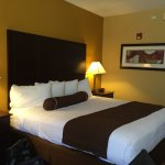 Photo of BEST WESTERN PLUS Bradenton Hotel & Suites
