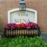 Gervasi Vineyard Winery Tours Foto