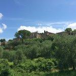 Foto di Azienda Agricola Montestigliano