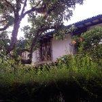 Para ir a mi habitación debía atravesar este jardín de cuento, por el que pululan los colibríes