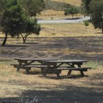 Picnic Tables, Santa Teresa County Park, San Jose, Ca