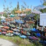 Art display at the Fishway