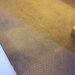 Wrinkled carpet. Worse then pic shows