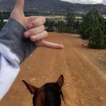 Hanging loose on the horseback tour