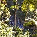Landscape - Eden Health Retreat Photo
