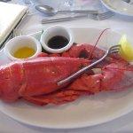 Lobster was so fresh!