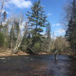 Brule River State Forest