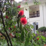 Four Points by Sheraton Arusha, The Arusha Hotel Foto