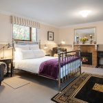 Camellia Cottage - Lounge/bedroom with gas log fire and air conditioning