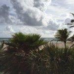 это фото сделано с лестницы отеля пальмы во дворе, вид на океан и собственно выход на пляж