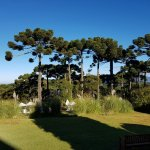 Foto de Hotel Toriba