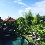 Photo of Villa Diana Bali