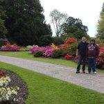 The Blarney Castle gardens. May, 2016