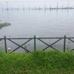 Foto de Backwater Ripples
