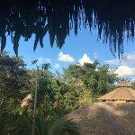 La Selva Amazon Ecolodge Foto