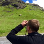 """Buzzards and Eagle spotting with Bryan of """"Wild about Mull"""""""