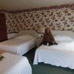 Windermere Hotel照片
