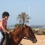 Photo de Ecole d'equitation Royal Carriage Club