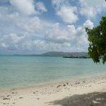 isla coco's