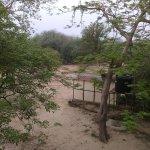 Foto di Hotel Bharatpur Ashok (Forest Lodge)