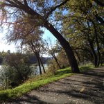 Walking path along Sacramento River