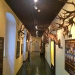 Haus der Natur Foto