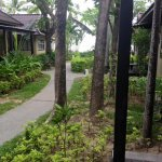 Photo de Peace Resort