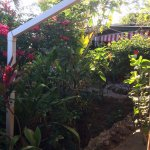 Foto de Judy House Cottages and Rooms