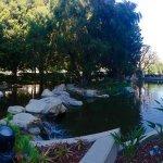 Doubletree by Hilton Anaheim - Orange County Foto